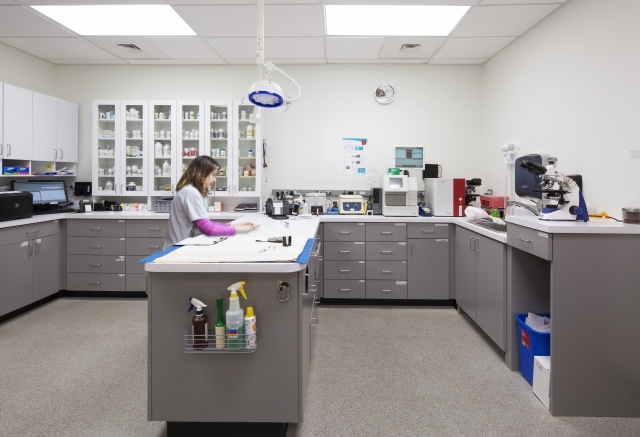 HENRY ADAMS provided the MEP engineering services for the expansion of the Pikesville Animal Hospital